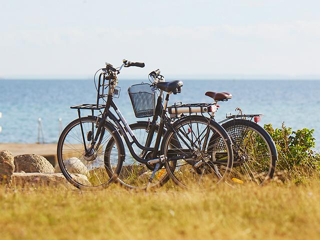 Cyklar på Öland