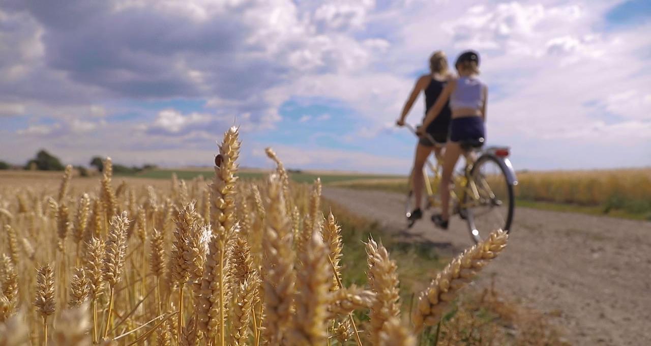 cykeltur på Ven