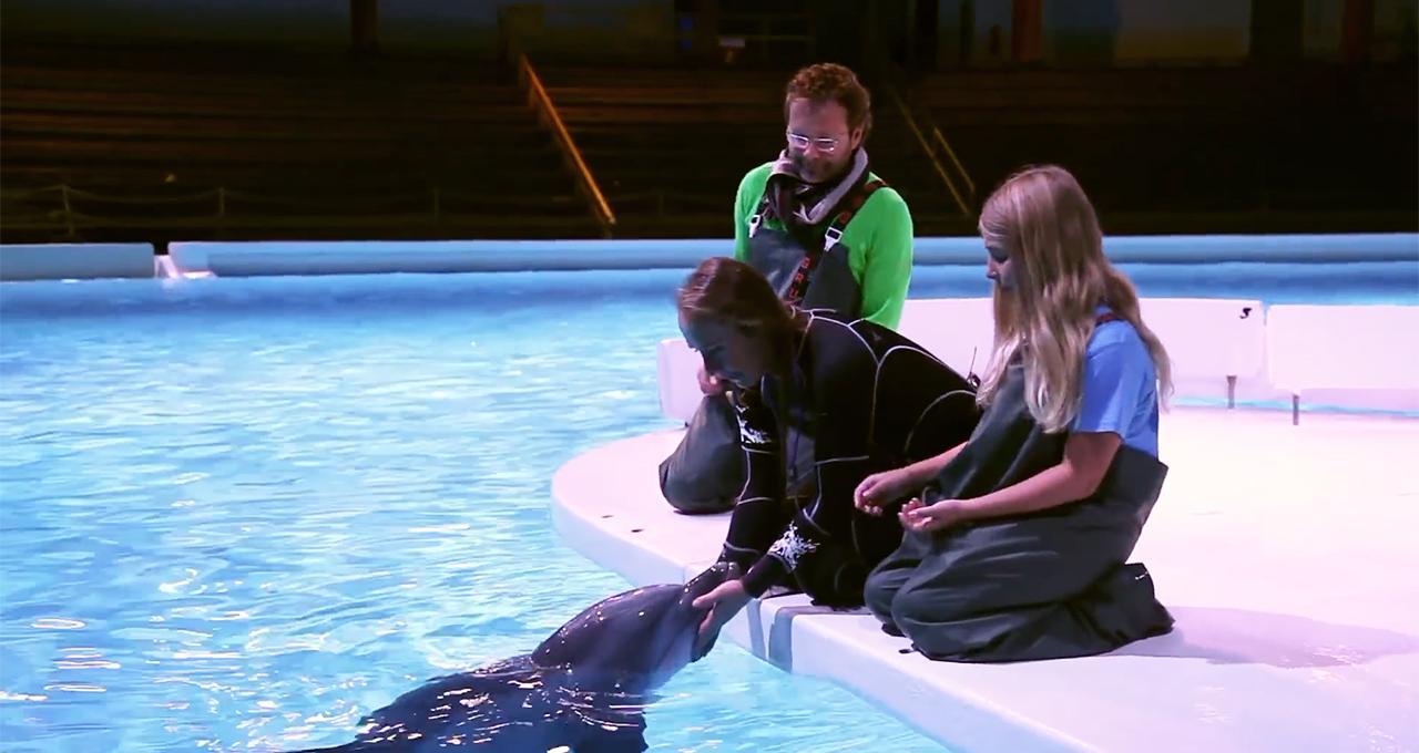 Kela med delfin på Kolmården