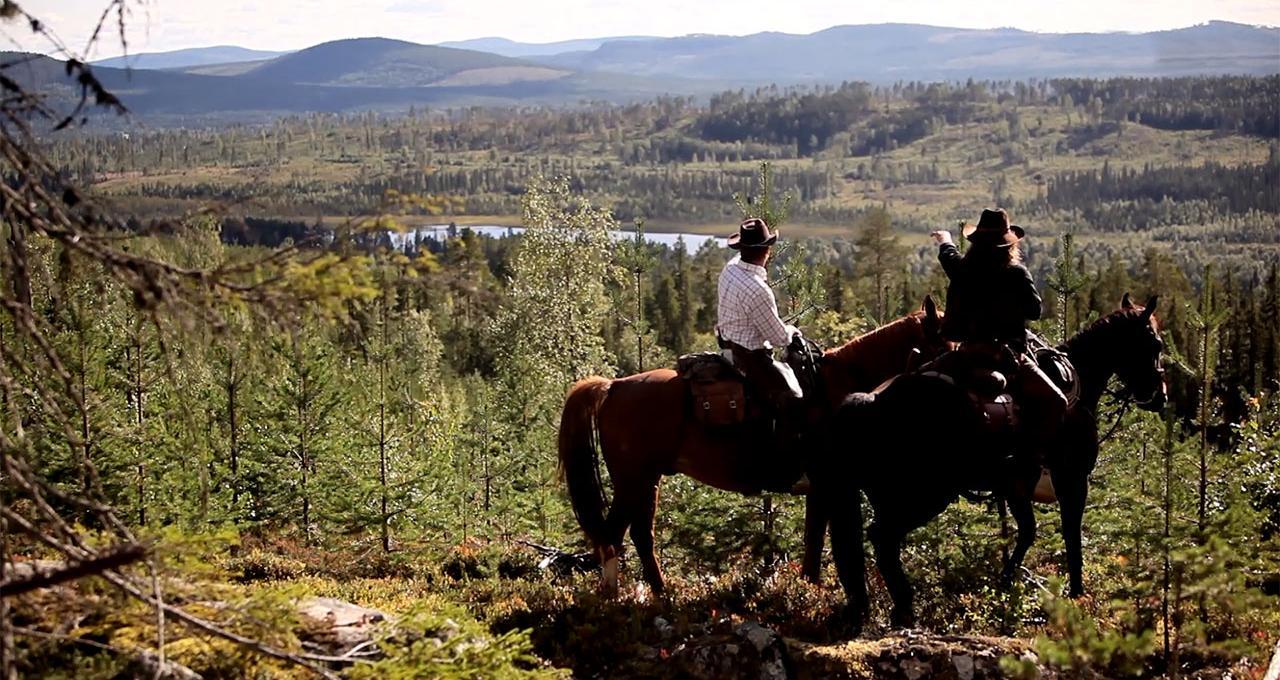 Cowboyridning i vildmarken