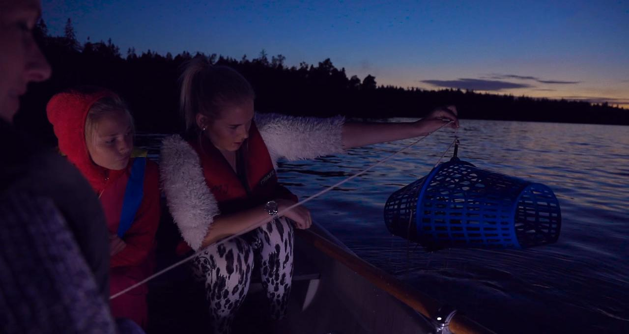 Kräftfiske i Vättern