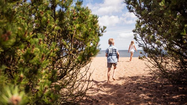 Springa på stranden