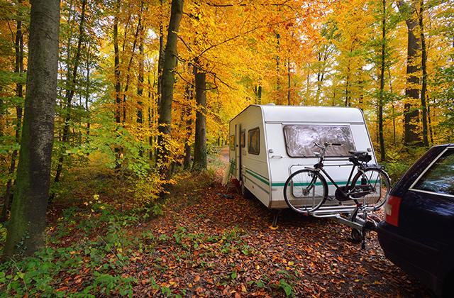Husvagn i höstskog
